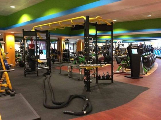 Equipment Manufacturer - Cybex - Health Fitness India